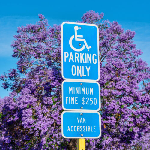 Ada,Handicapped,Sign:,Parking,Only,(with,Handicapped,Wheelchair,Symbol),Marks